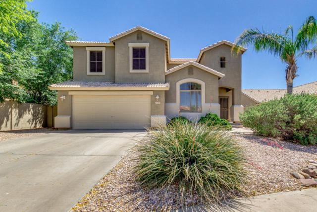 1209 S Park Grove Court, Gilbert, AZ 85296 (MLS #5754237) :: Sibbach Team - Realty One Group