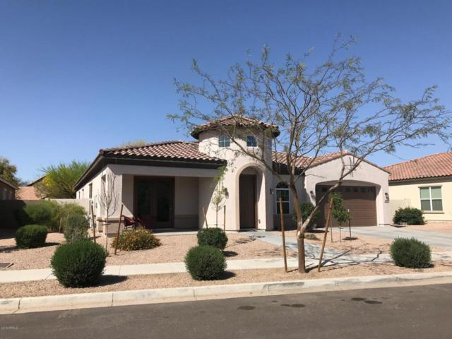 22166 E Cherrywood Drive, Queen Creek, AZ 85142 (MLS #5754242) :: Revelation Real Estate