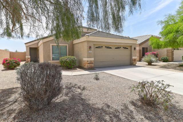 1387 E Anastasia Street, San Tan Valley, AZ 85140 (MLS #5754260) :: Revelation Real Estate