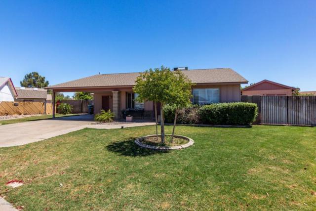 3715 W Michelle Drive, Glendale, AZ 85308 (MLS #5754268) :: REMAX Professionals