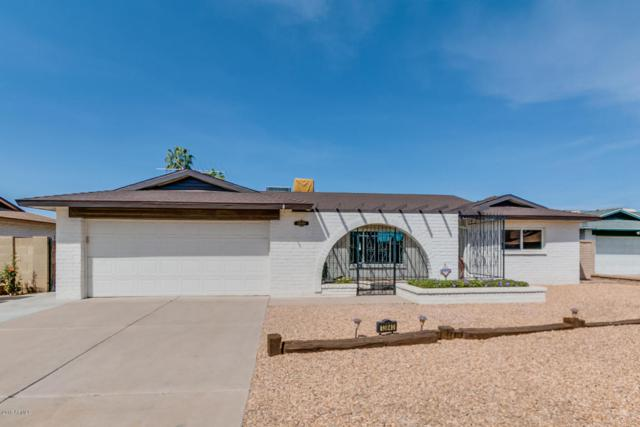 13840 N 52ND Drive, Glendale, AZ 85306 (MLS #5754278) :: REMAX Professionals