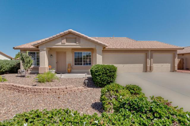 880 W 13TH Avenue, Apache Junction, AZ 85120 (MLS #5754282) :: Ashley & Associates