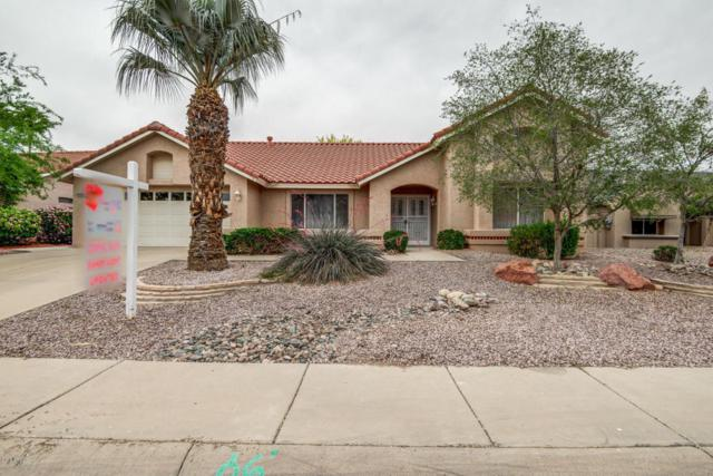 13516 W White Wood Drive, Sun City West, AZ 85375 (MLS #5754288) :: Kelly Cook Real Estate Group