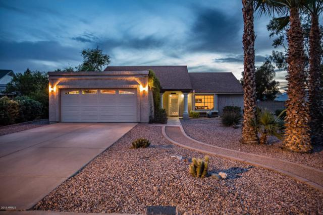 7302 S Oak Street, Tempe, AZ 85283 (MLS #5754294) :: Sibbach Team - Realty One Group