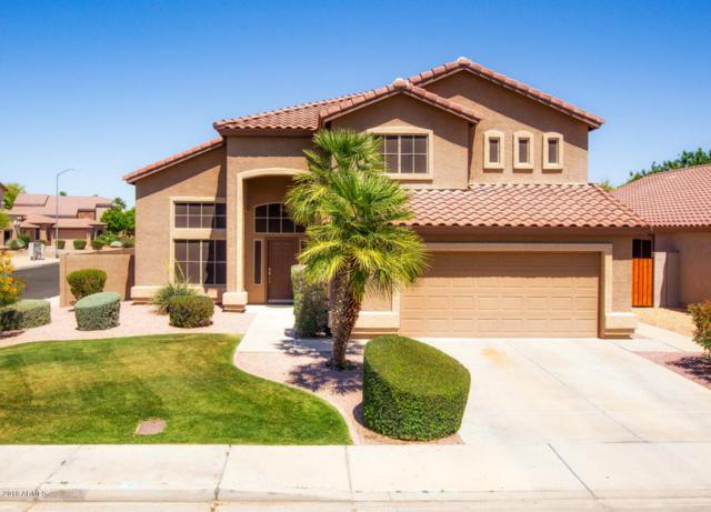 6888 W Firebird Drive, Glendale, AZ 85308 (MLS #5754302) :: Sibbach Team - Realty One Group