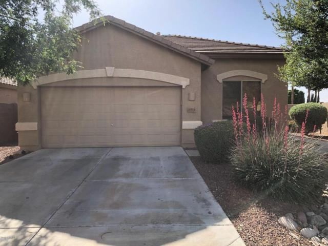 4914 N 126TH Drive, Litchfield Park, AZ 85340 (MLS #5754312) :: Kelly Cook Real Estate Group