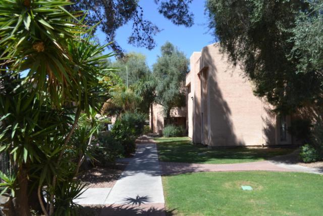 3131 W Cochise Drive #218, Phoenix, AZ 85051 (MLS #5754313) :: Keller Williams Legacy One Realty
