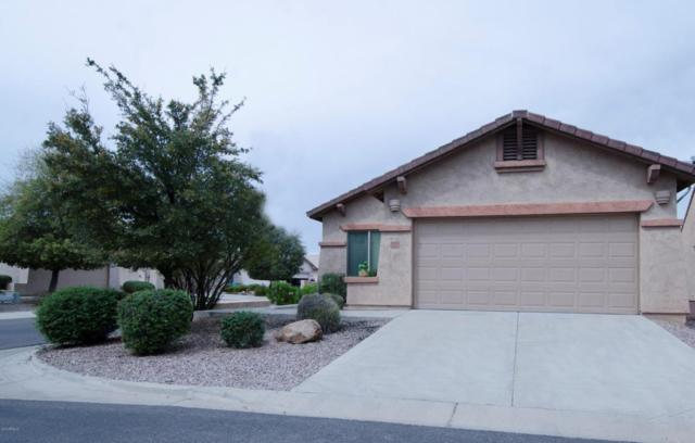 10958 E Secret Mine Court, Gold Canyon, AZ 85118 (MLS #5754316) :: The Pete Dijkstra Team