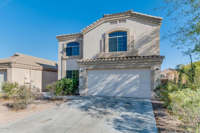 23983 W Antelope Trail, Buckeye, AZ 85326 (MLS #5754321) :: Desert Home Premier