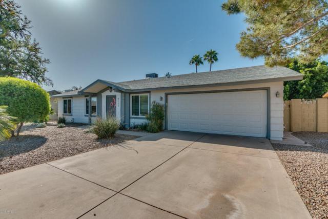 5117 E Half Moon Drive, Phoenix, AZ 85044 (MLS #5754329) :: REMAX Professionals