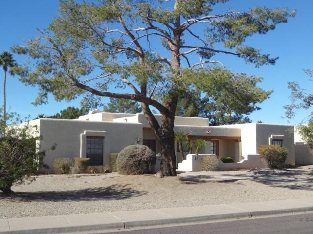 16210 N 53rd Avenue, Glendale, AZ 85306 (MLS #5754345) :: REMAX Professionals