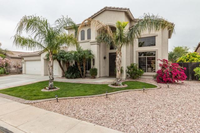 8217 W Crocus Drive, Peoria, AZ 85381 (MLS #5754349) :: Sibbach Team - Realty One Group