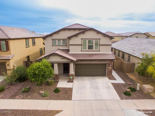 15599 W Poinsettia Drive, Surprise, AZ 85379 (MLS #5754354) :: Occasio Realty