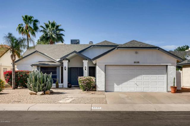 3838 E Carol Ann Way, Phoenix, AZ 85032 (MLS #5754360) :: REMAX Professionals