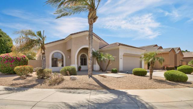 13545 W Alvarado Drive, Goodyear, AZ 85395 (MLS #5754362) :: Ashley & Associates