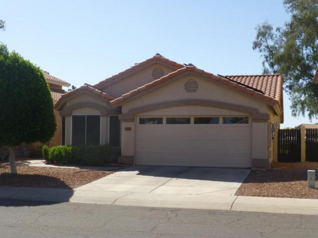19816 N 77TH Drive, Glendale, AZ 85308 (MLS #5754366) :: Sibbach Team - Realty One Group