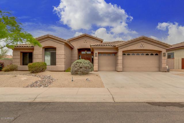 11576 N 131ST Street, Scottsdale, AZ 85259 (MLS #5754378) :: Sibbach Team - Realty One Group
