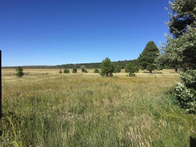 455 Why Worry Lane, Mormon Lake, AZ 86038 (MLS #5754388) :: Sibbach Team - Realty One Group