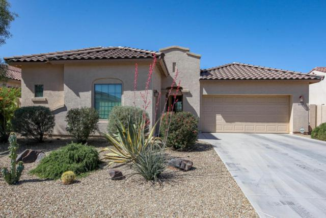 13652 S 177TH Avenue, Goodyear, AZ 85338 (MLS #5754411) :: Ashley & Associates