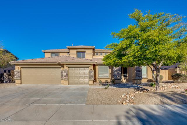17656 W Polaris Drive, Goodyear, AZ 85338 (MLS #5754424) :: Ashley & Associates