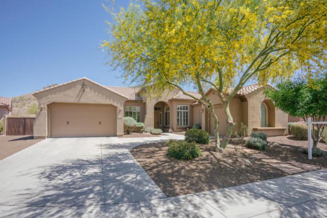 26409 N 49TH Lane, Phoenix, AZ 85083 (MLS #5754440) :: The Laughton Team