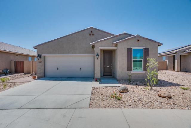 33810 N 30TH Lane, Phoenix, AZ 85085 (MLS #5754450) :: Occasio Realty
