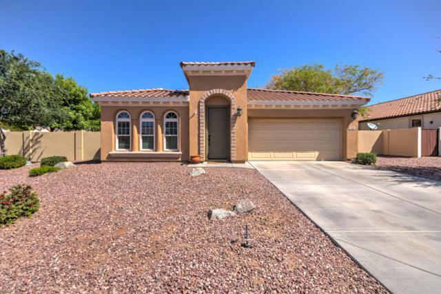 2306 E Balsam Drive, Chandler, AZ 85286 (MLS #5754474) :: Keller Williams Realty Phoenix