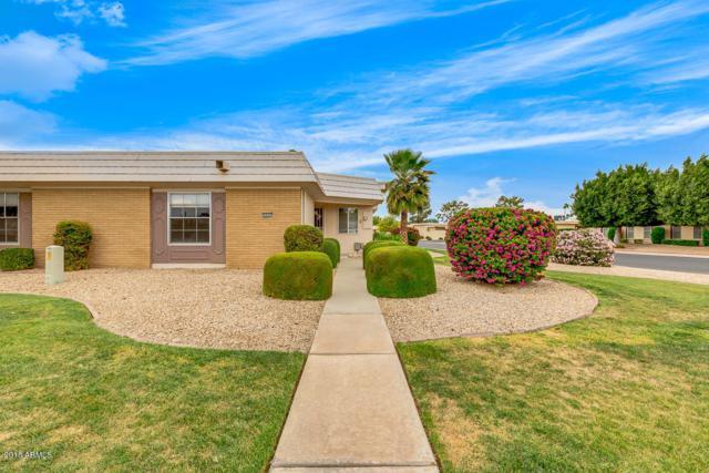 10502 W Palmeras Drive, Sun City, AZ 85373 (MLS #5754495) :: Ashley & Associates