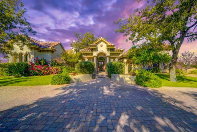 20364 E Via De Arboles, Queen Creek, AZ 85142 (MLS #5754497) :: Lux Home Group at  Keller Williams Realty Phoenix