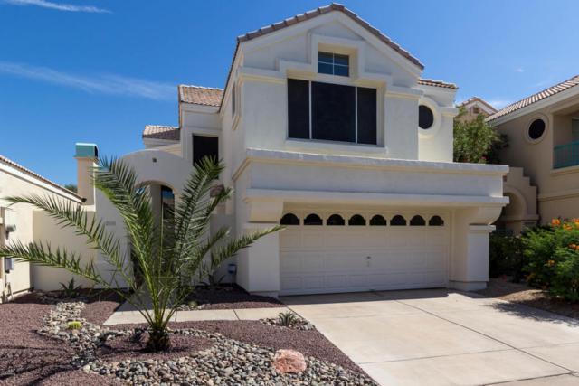 1138 E Frye Road, Phoenix, AZ 85048 (MLS #5754507) :: Ashley & Associates