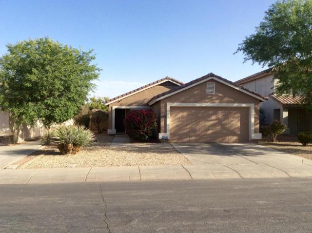 12045 W Scotts Drive, El Mirage, AZ 85335 (MLS #5754518) :: Kelly Cook Real Estate Group