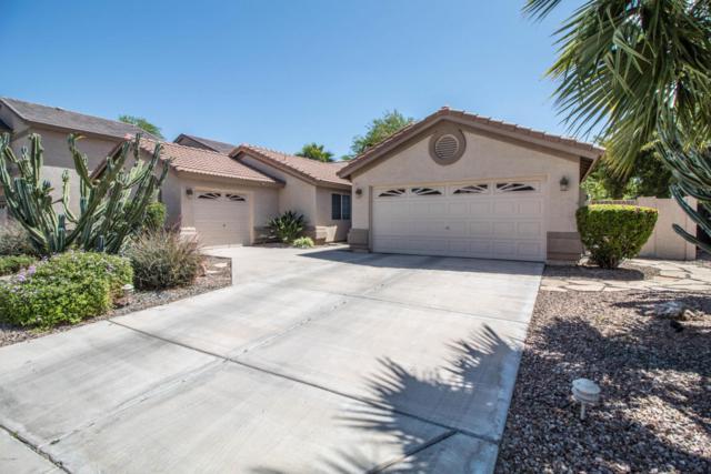 6327 W Tonopah Drive, Glendale, AZ 85308 (MLS #5754520) :: The Laughton Team