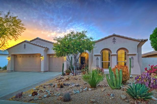15824 W Bonitos Drive, Goodyear, AZ 85395 (MLS #5754532) :: The Sweet Group