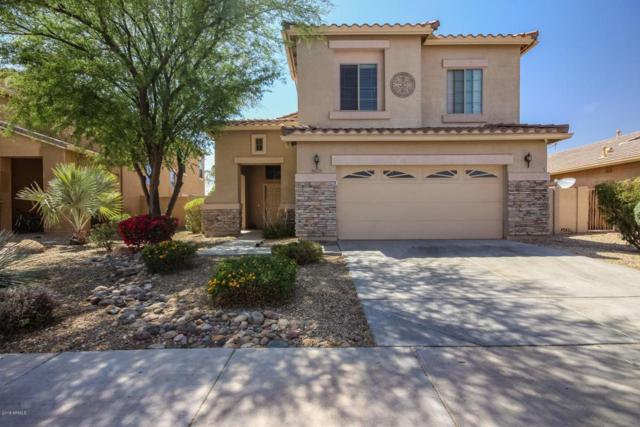 16220 N 178TH Avenue, Surprise, AZ 85388 (MLS #5754539) :: Kelly Cook Real Estate Group