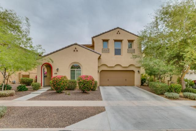 13701 N 150TH Lane, Surprise, AZ 85379 (MLS #5754555) :: Kelly Cook Real Estate Group