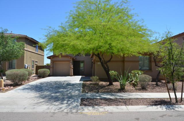 24059 N 163rd Drive, Surprise, AZ 85387 (MLS #5754568) :: The Sweet Group