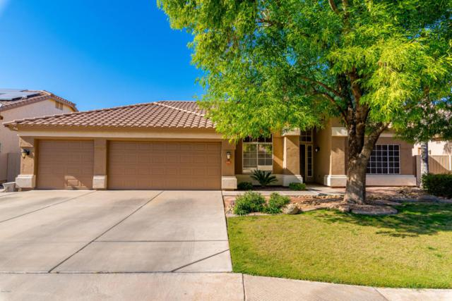 658 W San Angelo Street, Gilbert, AZ 85233 (MLS #5754582) :: Kelly Cook Real Estate Group