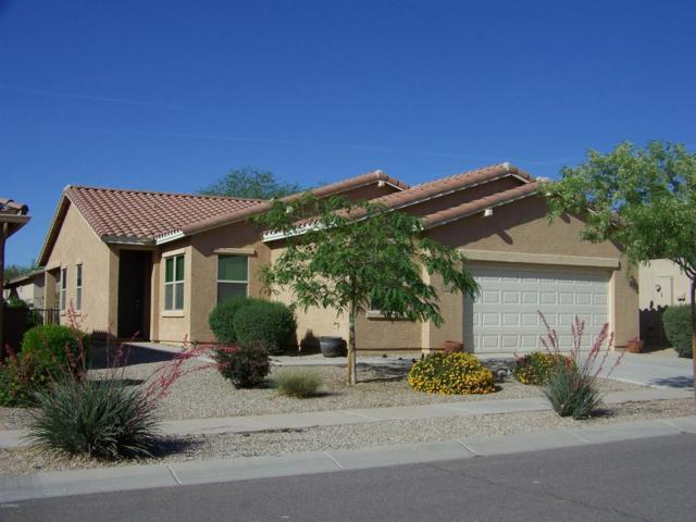2614 E San Simeon Drive, Casa Grande, AZ 85194 (MLS #5754591) :: Kortright Group - West USA Realty