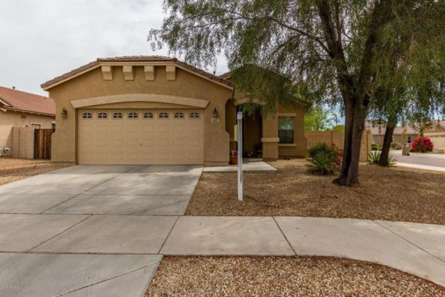 1687 S 170TH Avenue, Goodyear, AZ 85338 (MLS #5754634) :: The Sweet Group