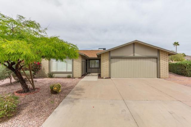11006 S Pipa Street, Phoenix, AZ 85044 (MLS #5754642) :: Occasio Realty