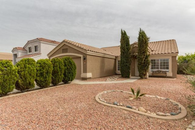 11167 W Mystic Sadie Drive, Surprise, AZ 85378 (MLS #5754661) :: Lifestyle Partners Team