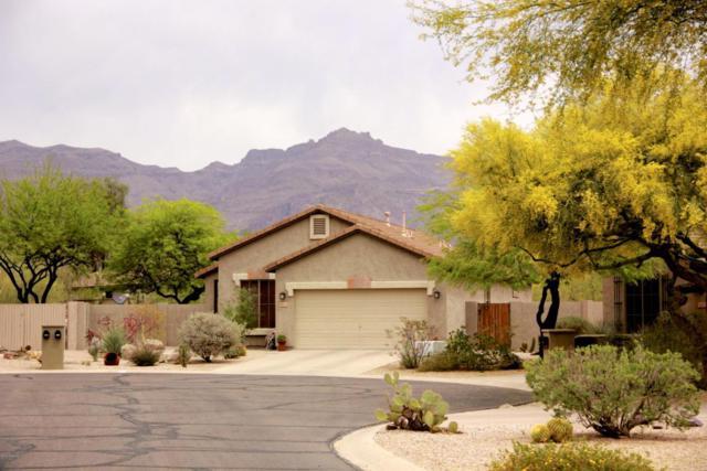 6615 E Las Animas Trail, Gold Canyon, AZ 85118 (MLS #5754678) :: The Pete Dijkstra Team
