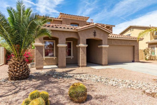 3681 E Jaguar Avenue, Gilbert, AZ 85298 (MLS #5754680) :: Kelly Cook Real Estate Group