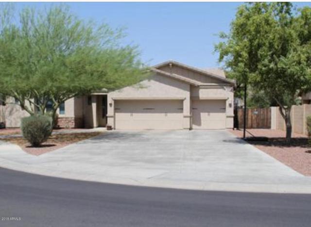 27199 N 93RD Drive, Peoria, AZ 85383 (MLS #5754687) :: Kelly Cook Real Estate Group