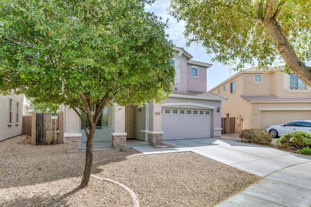 15091 N 173RD Lane, Surprise, AZ 85388 (MLS #5754694) :: The Sweet Group