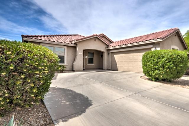 2449 W Spencer Run, Phoenix, AZ 85041 (MLS #5754711) :: Keller Williams Realty Phoenix
