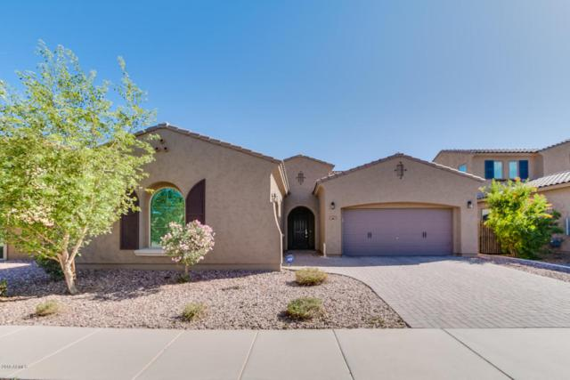 14335 W Coronado Road, Goodyear, AZ 85395 (MLS #5754756) :: The Sweet Group