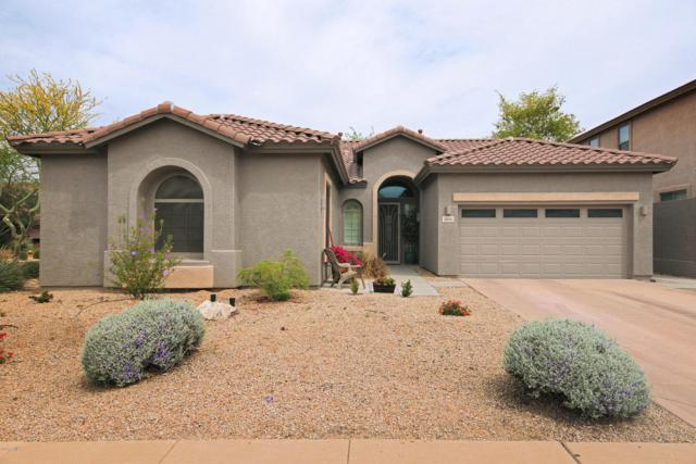 3126 W Languid Lane, Phoenix, AZ 85086 (MLS #5754757) :: Kelly Cook Real Estate Group