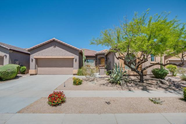 2320 W Horsetail Trail, Phoenix, AZ 85085 (MLS #5754760) :: Kelly Cook Real Estate Group