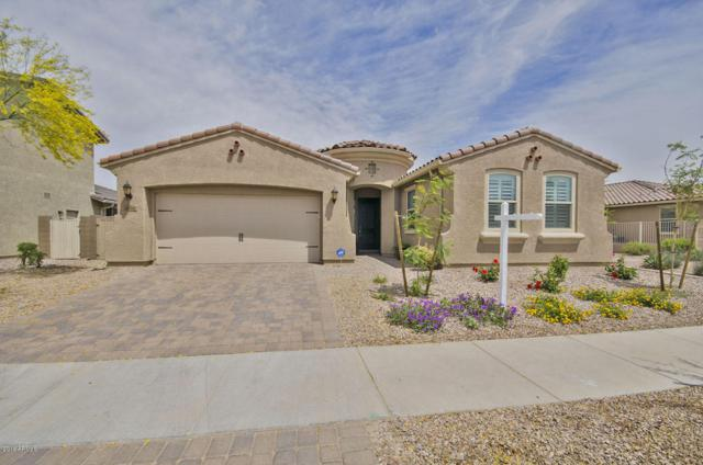 8992 W Diana Avenue, Peoria, AZ 85345 (MLS #5754764) :: Santizo Realty Group